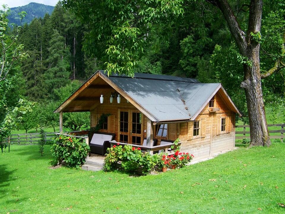 dom drewniany z bala wśród drzew